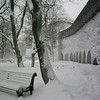 A man walks in a snowy park in Tallin, Estoina.  (Jenni Farrow)