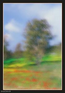 Homage to Pissarro