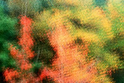 Points of Autumn