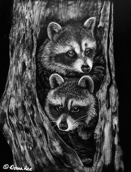 "The Hang Out  14 x 18 Scratch board.  <br /> <br /> Reference Photo Provided by Leesa at <a href=""http://www.wonderworldphoto.com"">http://www.wonderworldphoto.com</a>   Thank you Leesa."