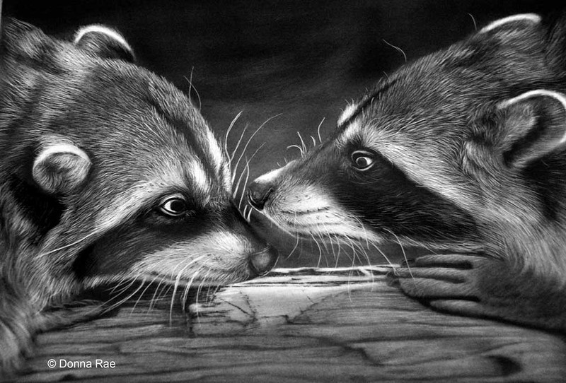 "11 x 14 India ink on claybord  ""The Gangsters""<br /> <br /> Specail thank to Olgalis at <a href=""http://www.dreamstime.com/love-games-of-raccoons-rimage2238150-resi364340"">http://www.dreamstime.com/love-games-of-raccoons-rimage2238150-resi364340</a> for use of photo referrence."