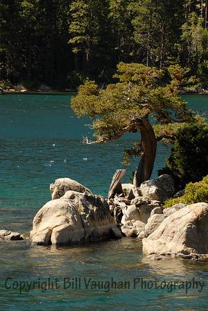 Emerald Bay, Lake Tahoe.  Tree on the island in Emerald Bary