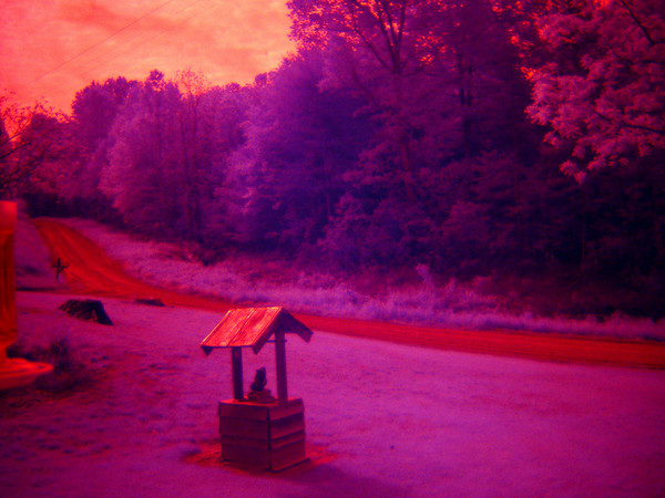 Another product of infrared. This was taken with my Sony DCS F707 and a Hoya R72 lens. Striking colors huh.  Janine