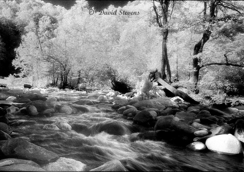 Smokey MT rapids 2