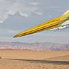 Great Egret In The Desert