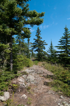 High Point on the Stoll Trail, Isle Royale National Park, Michigan