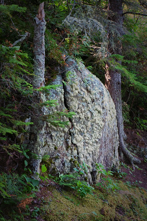 Split Rock, Lichen, and Moss