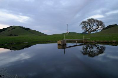 Chileno Valley Pond in Petaluma