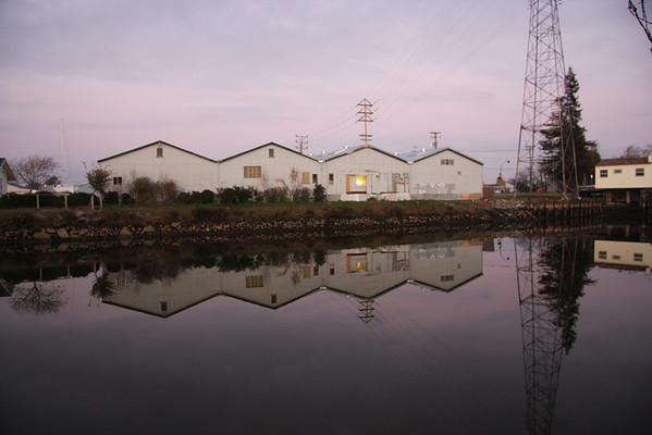 Petaluma Basin Reflections