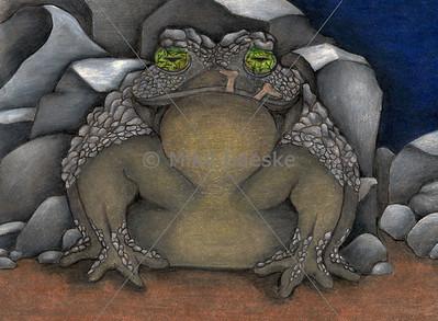 Boulder Toad Illustration by Jordan Pawlik for the book Remnants of Humanity