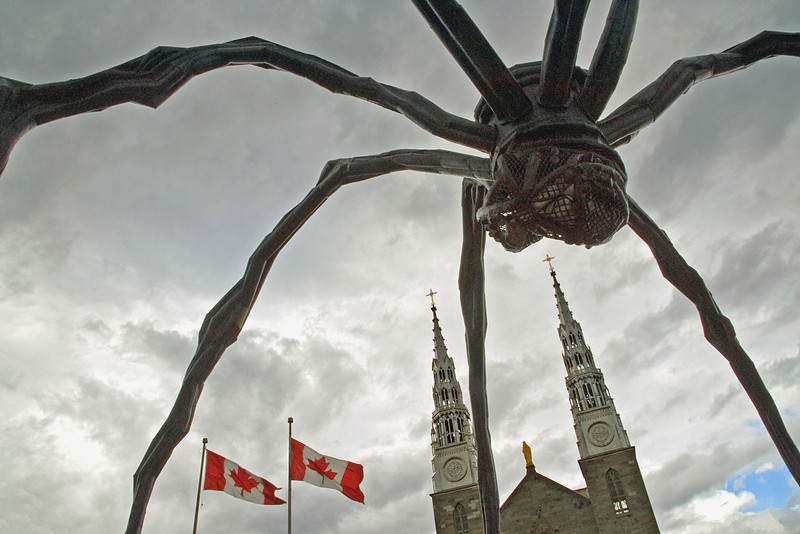 """The Spider Takes Ottawa""  <i>Maman,</i> sculpture by the artist Louise Bourgeois, measures over 30ft high and more than 33ft wide, with a sac containing 26 marble eggs. Notre Dame Cathedral towers above."