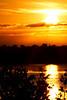 Orange Sky Sunrise at Merritt Island Wildlife Refuge - Titusville, Florida