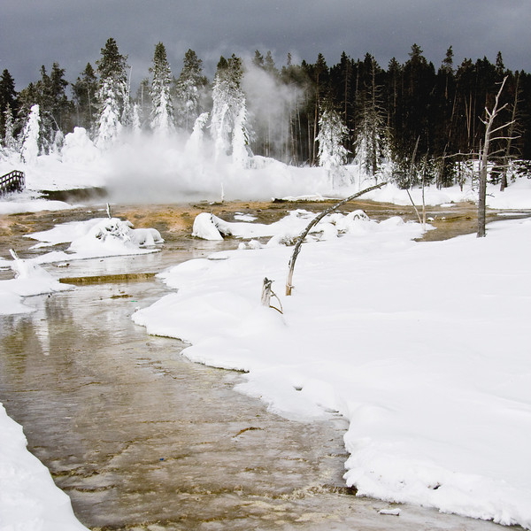 Geyser Basin with Winter Snow - Yellowstone National Park