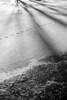 Winter Shadows and Footprints on Ice at Izaak Walton Park - Leesburg, Virginia