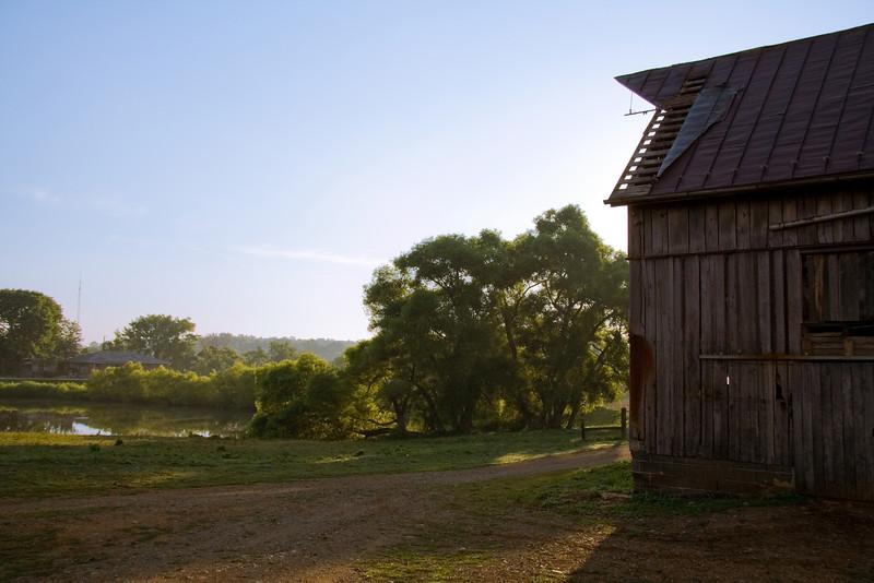 Summer Morning on Farm in Haymarket, Virginia