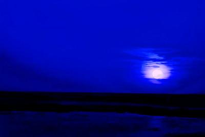 Blue Hawaiian Moon