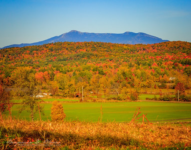 Mount Mansfield Foliage