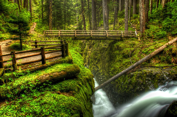 A short hike through old-growth forest in the Olympic National Park leads to the beautiful Sol Duc Falls. Photo by Jared Rogers
