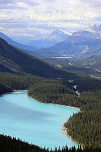 Peyto Lake in Banff, Canada