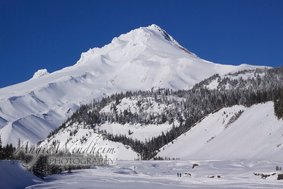 Mt. Hood at White River in January 2011