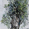 "Greek Olive<br /> watercolor<br /> 10"" x 30"""
