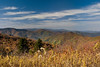 View of the Pisgah mountains at Balsam Forest along the Blue Ridge Parkway