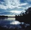 Beaver Lake Bird Sanctuary No. 5