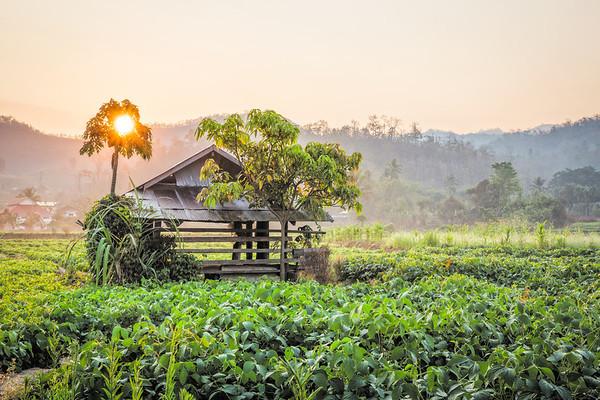 Thailand Sunrise