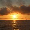 Deep Sea Fishing Trip, Savannah, Ga 10/2013