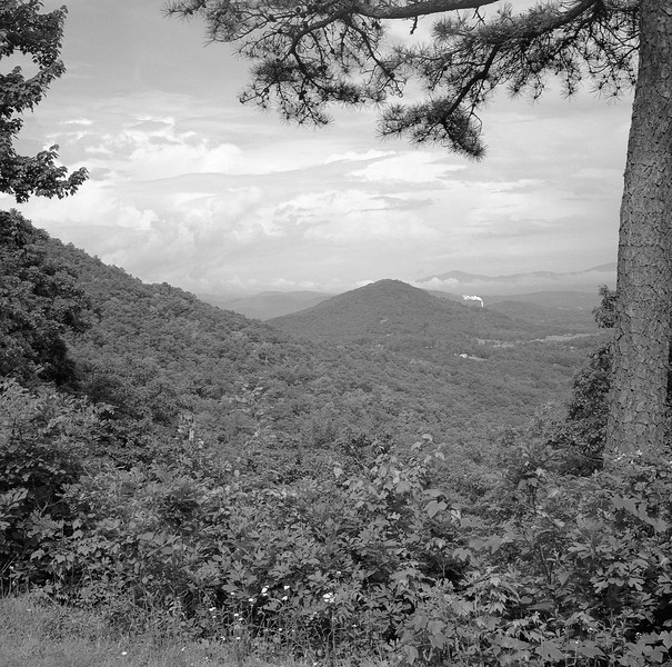 A view from Chestnut Cove on the Blue Ridge Parkway. Taken with Fujifilm Neopan Acros 100 film on a Mamiya 6 medium format camera.