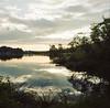 Beaver Lake Bird Sanctuary No. 11