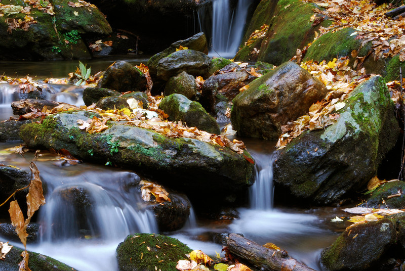 Landscape of a waterfall along FR74 through the Pisgah National Forest in Big Ivy Forest to Douglas Falls.