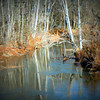 Rocky Creek, Augusta, Ga