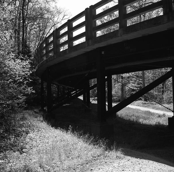 NC Arboretum Bridge #2