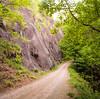 FR74 to Douglas Falls - The Road to Douglas Falls