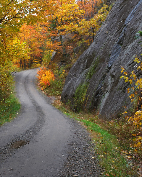 An autumn view of FR 74 through Big Ivy Forest/Pisgah National Forest, the route to Douglas Falls.