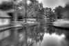 1201_Bellingrath Gardens_0052_3_5_7