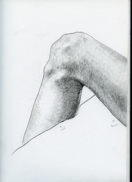 doug's leg