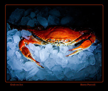 crab on ice with light painting