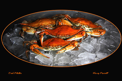 crab platter with light painting