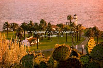 Pt. Vicente Cactus View -latc_0010