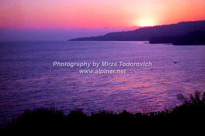 Purple Sea - latc_0026