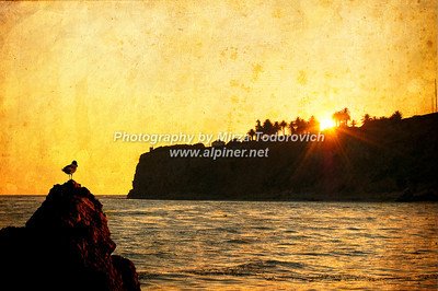 Sunset Behind the Lighthouse - latc_0035