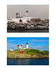 nubble collage