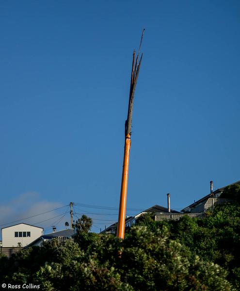 The Morning After Lightning Damages Wellington's Zephyrometer, 15 August 2014