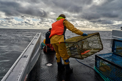 Paying out the baited traps. Boats are open ended and untidy lines can snag a fisher pulling them overboard into frigid waters.