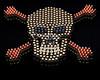 Skull and Cross Bones, Bullet Art