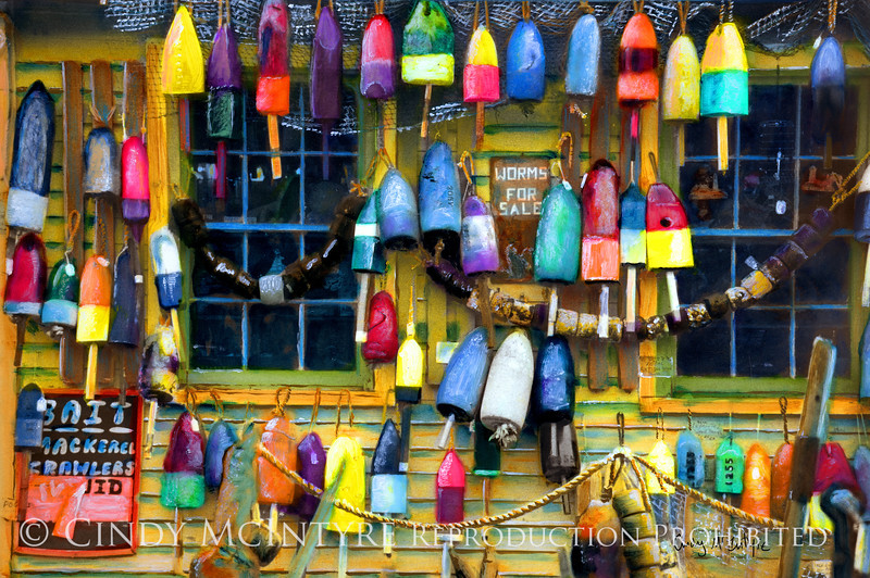 Bait Shop -  Old lobster buoys hanging on a shop wall in Maine