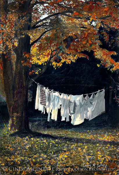 Laundry line and autumn trees, Minot, Maine