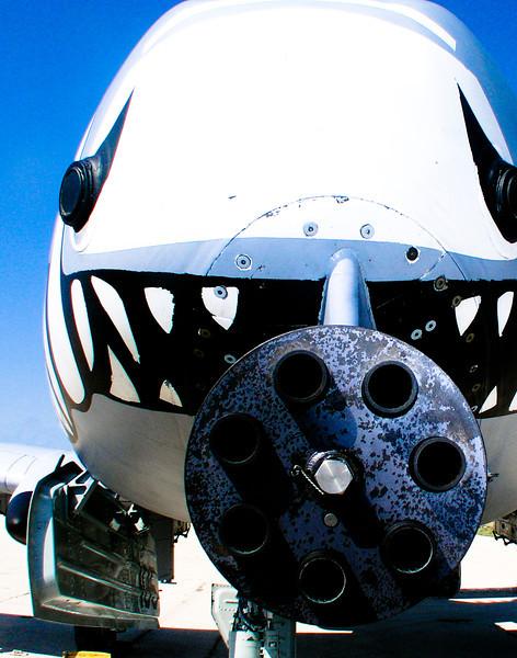 A-10 Warthog: The plane built around a gun